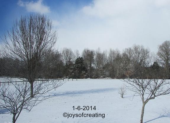 1-6-2014-snow