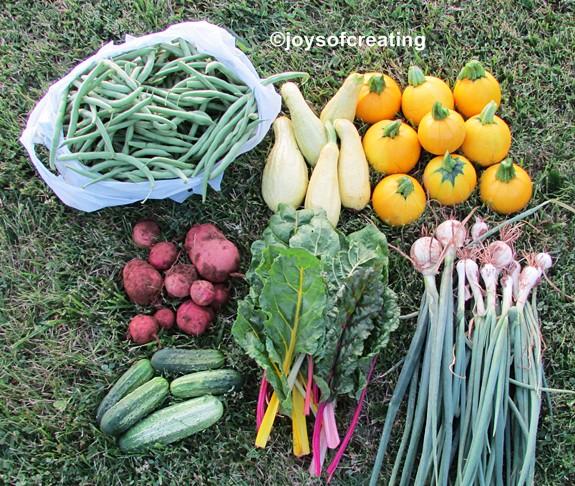Harvest 6-22-2014