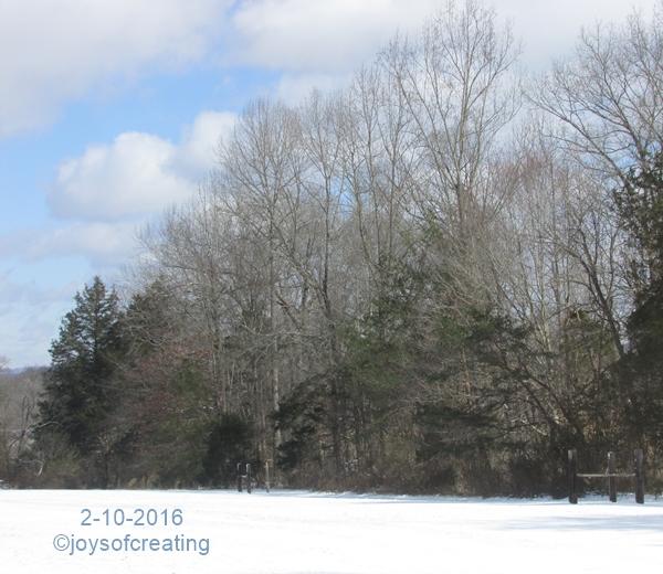 2-10-2016-snow